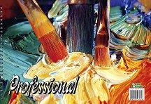 Скицник за рисуване - Professional - Комплект от 2 или 5 броя с размер 24 x 33 cm