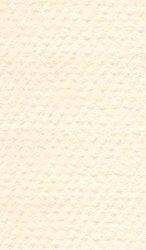 """Хартия за рисуване - 111 Ivory - Серия """"Mi-Teintes"""""""