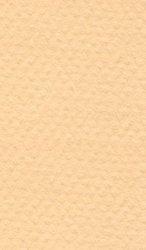 """Хартия за рисуване - 470 Champagne - Серия """"Mi-Teintes"""""""