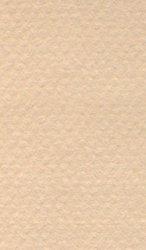 """Хартия за рисуване - 340 Oyster - Серия """"Mi-Teintes"""""""