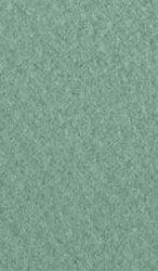 """Хартия за рисуване - 105 Green tea - Серия """"Mi-Teintes"""""""