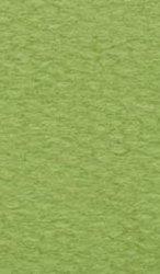 Хартия за рисуване - 480 Light green