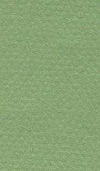 """Хартия за рисуване - 475 Apple green - Серия """"Mi-Teintes"""""""