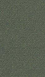 """Хартия за рисуване - 448 Ivy - Серия """"Mi-Teintes"""""""