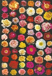 Декупажна хартия - Изобилие от рози 677