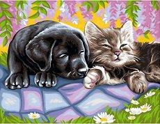 Нарисувай сам шедьовър - Куче и коте - Творчески комплект - творчески комплект