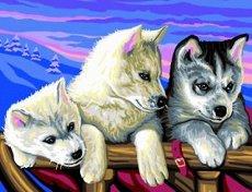 Нарисувай сам - Хъскита - Творчески комплект за рисуване с акрилни бои - творчески комплект